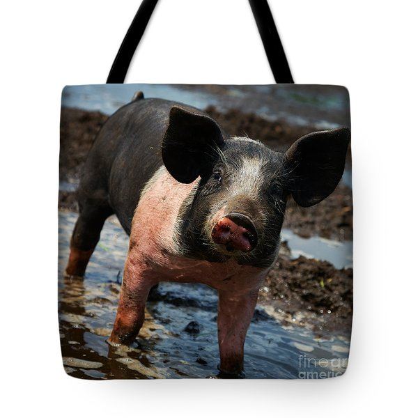 Pig In The Mud Tote Bag