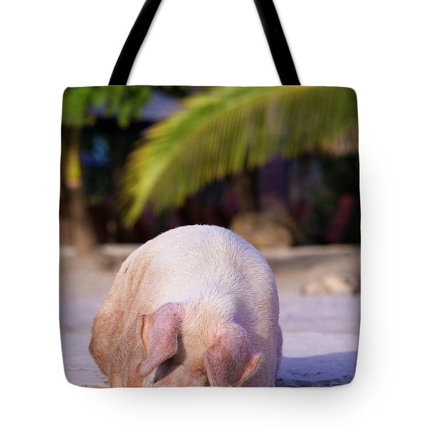Pig On Beach On Costa Rica Tote Bag