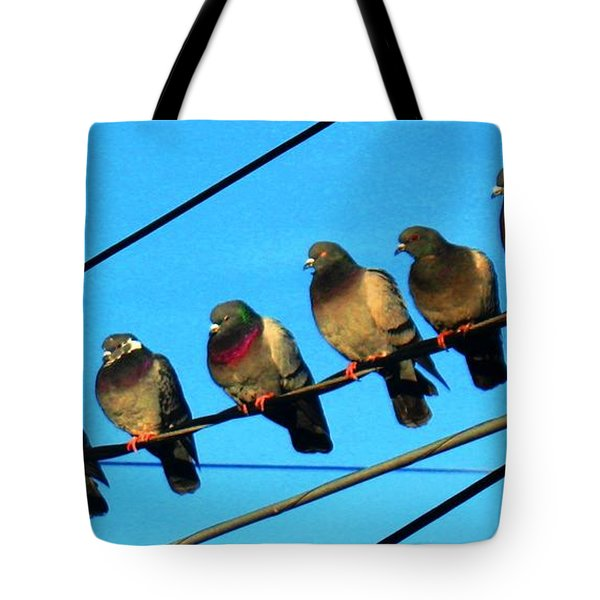Pigeon Beauty Pageant  Tote Bag