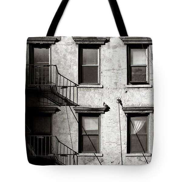 Pigeon Tote Bag by Dave Bowman