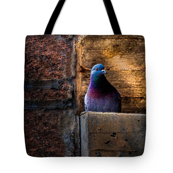 Pigeon Of The City Tote Bag