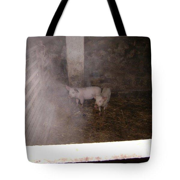 Piggies Tote Bag