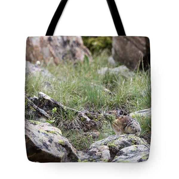 Pika  Tote Bag