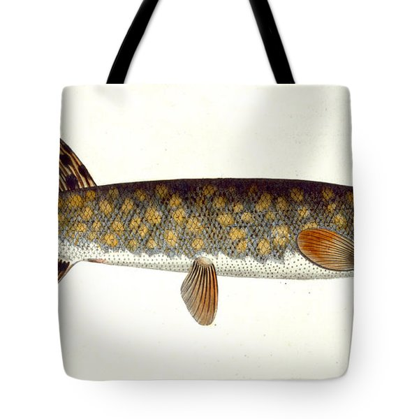 Pike Tote Bag by Andreas Ludwig Kruger