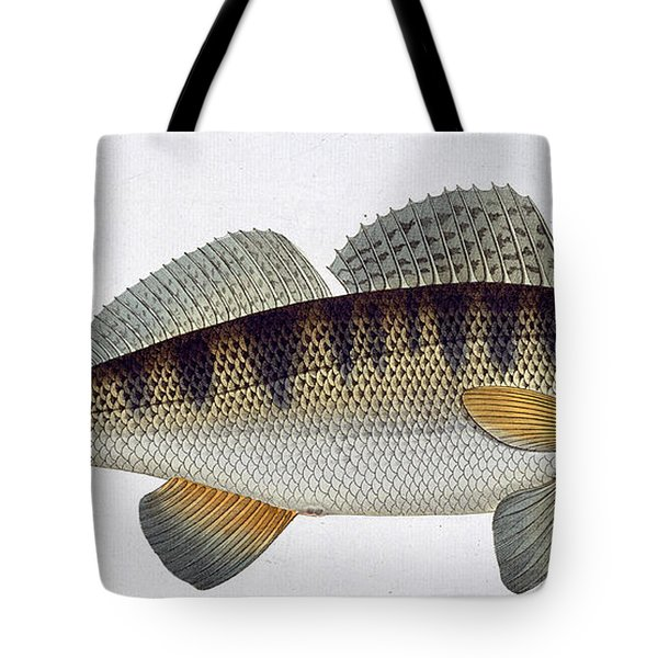 Pike Perch Tote Bag by Andreas Ludwig Kruger