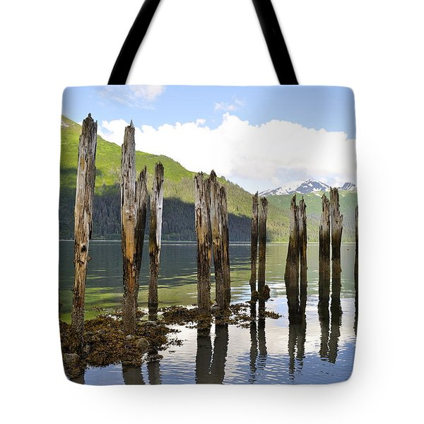 Tote Bag featuring the photograph Pilings by Cathy Mahnke