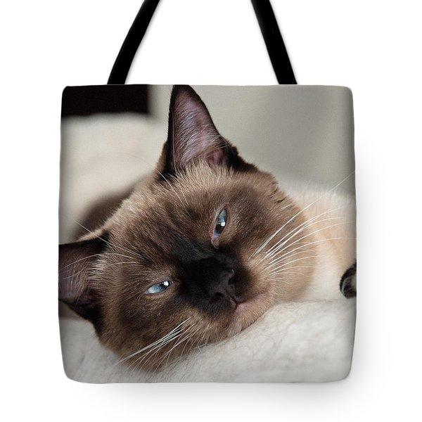 Pillow Talk Tote Bag by Minnie Lippiatt