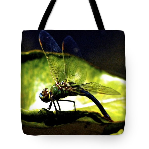 Pinao The Hawaiian Dragonfly Tote Bag by Lehua Pekelo-Stearns