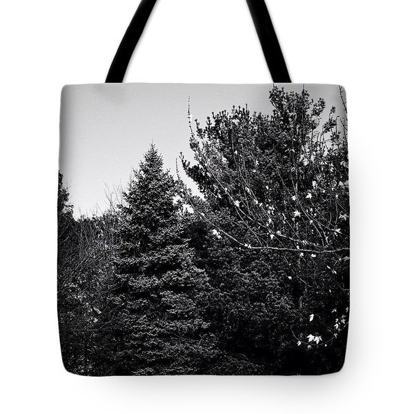 Pine And Leaves - Monochrome Tote Bag