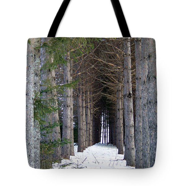 Pine Cathedral Tote Bag