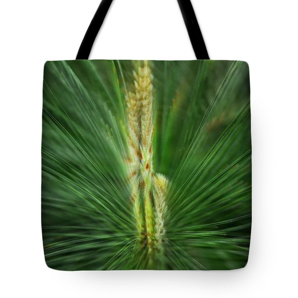 Pine Cone And Needles Tote Bag