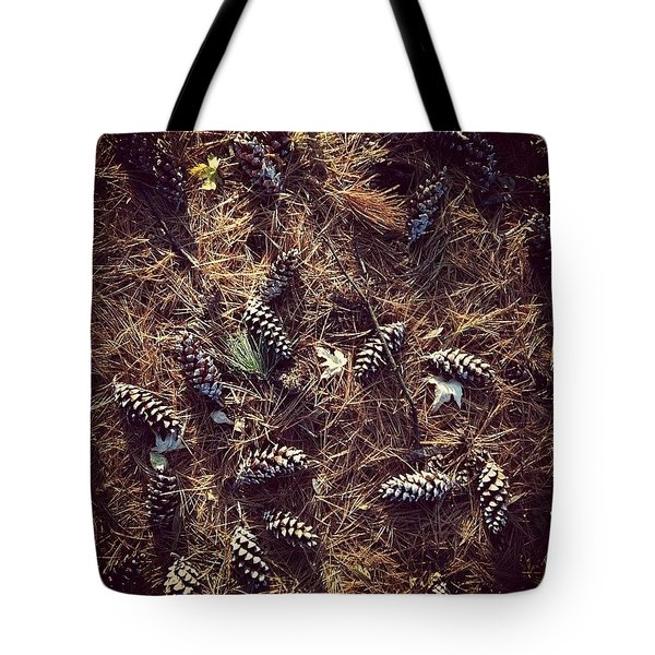 Pine Cones And Patterns Tote Bag