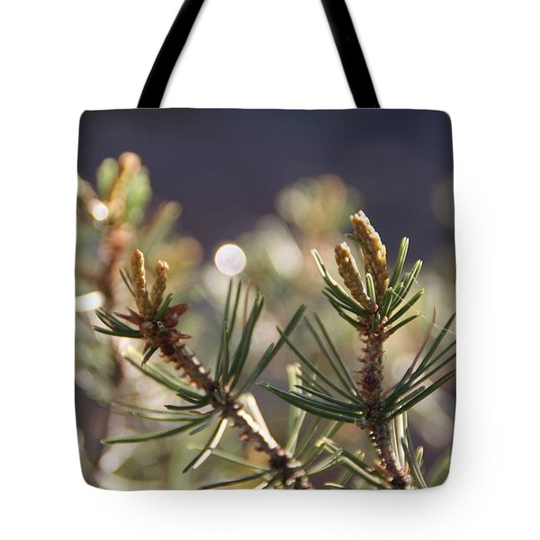 Tote Bag featuring the photograph Pine by David S Reynolds