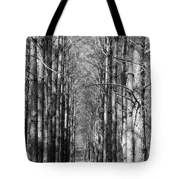 Pine Plantation Tote Bag by Betty Northcutt