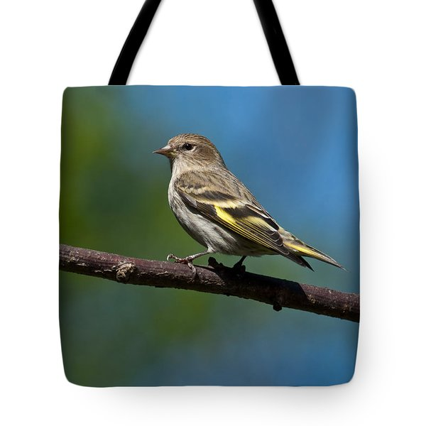 Pine Siskin Perched On A Branch Tote Bag