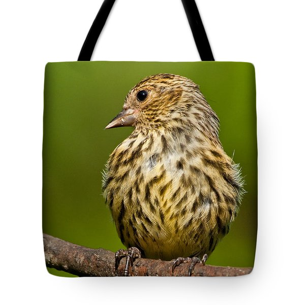 Pine Siskin With Yellow Coloration Tote Bag