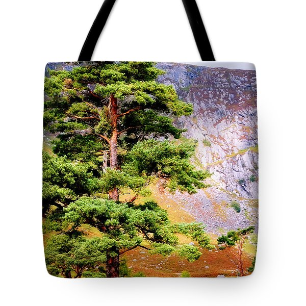 Pine Tree In Wicklow Hills. Ireland Tote Bag by Jenny Rainbow