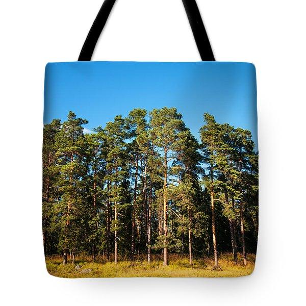 Pine Trees Of Valaam Island Tote Bag by Jenny Rainbow