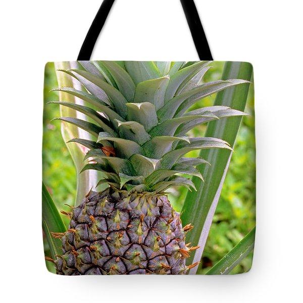 Pineapple Plant Tote Bag by Millard H. Sharp