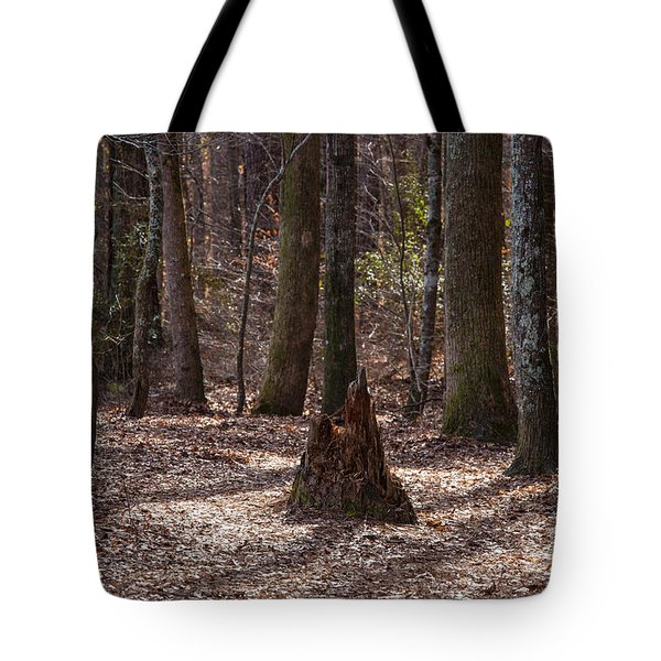 Pinetrees 1 Tote Bag