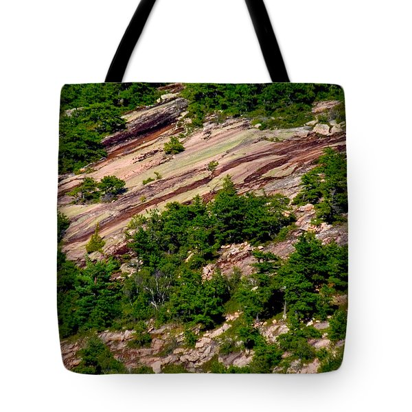 Pink Acadia 8103 Tote Bag by Brent L Ander