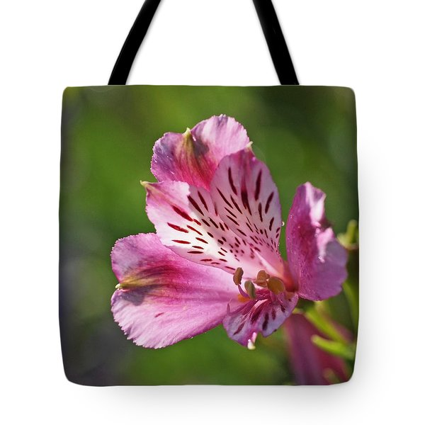 Pink Alstroemeria Flower Tote Bag by Rona Black