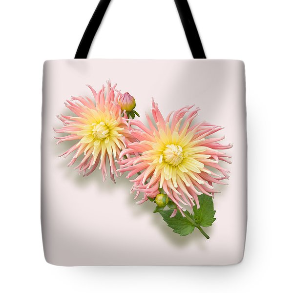 Pink And Cream Cactus Dahlia Tote Bag by Jane McIlroy