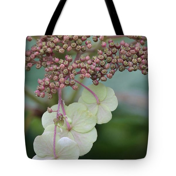 Pink And Green Hydrangea Closeup Tote Bag by Carol Groenen