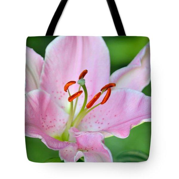Pink And Orange Tote Bag