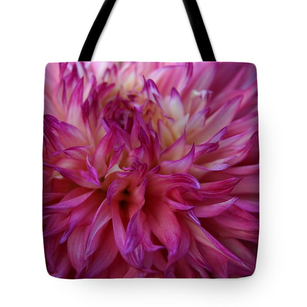 Tote Bag featuring the photograph Pink And White Dahlia  by Denyse Duhaime