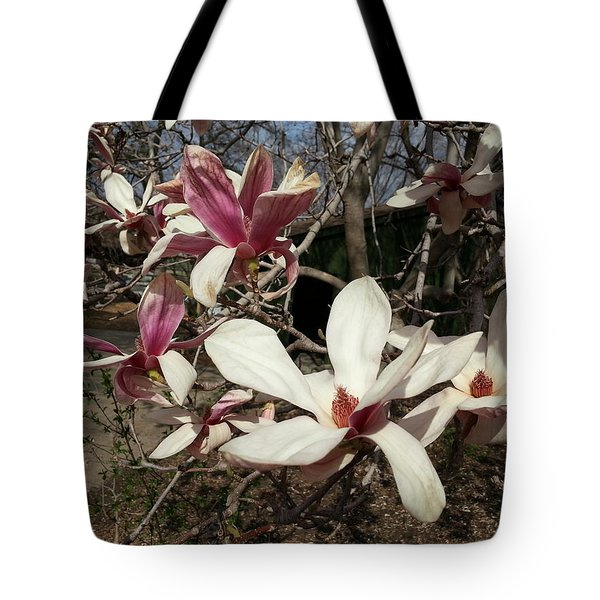 Tote Bag featuring the photograph Pink And White Spring Magnolia by Caryl J Bohn