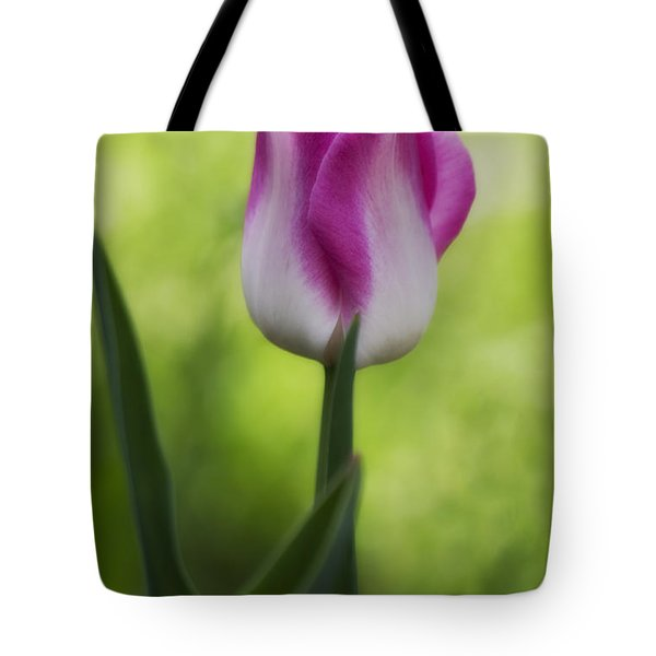 Pink And White Tulip Tote Bag by Shelly Gunderson