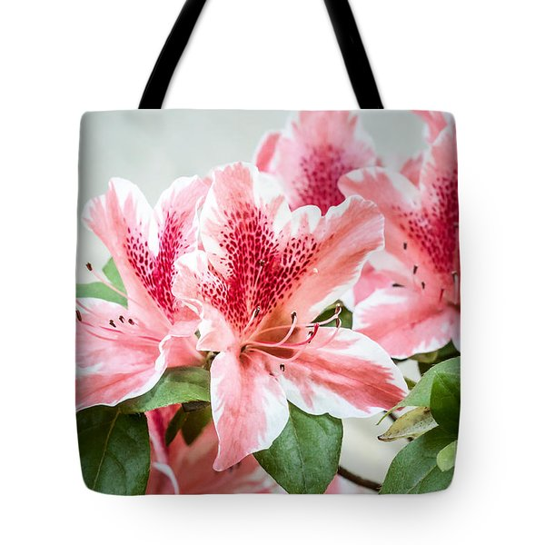 Pink Azaleas Tote Bag