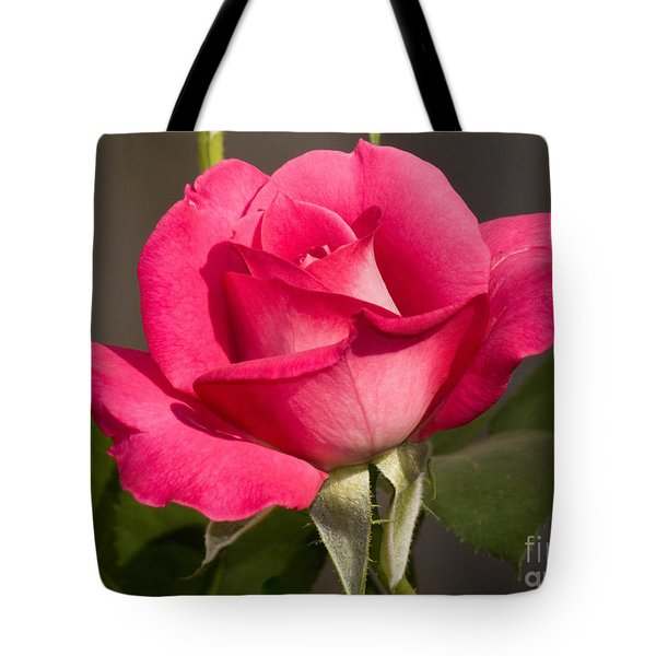 Tote Bag featuring the photograph Pink Beauty Rose by Debby Pueschel