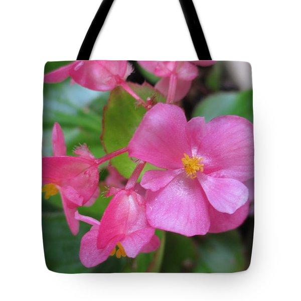 Pink Begonias Tote Bag by Barbara Yearty