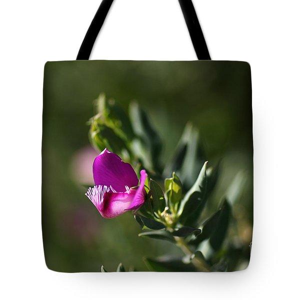 Pink Blush - Sweet Pea Bush  Tote Bag by Joy Watson