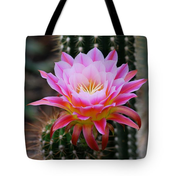 Pink Cactus Flower Tote Bag by Nancy Mueller