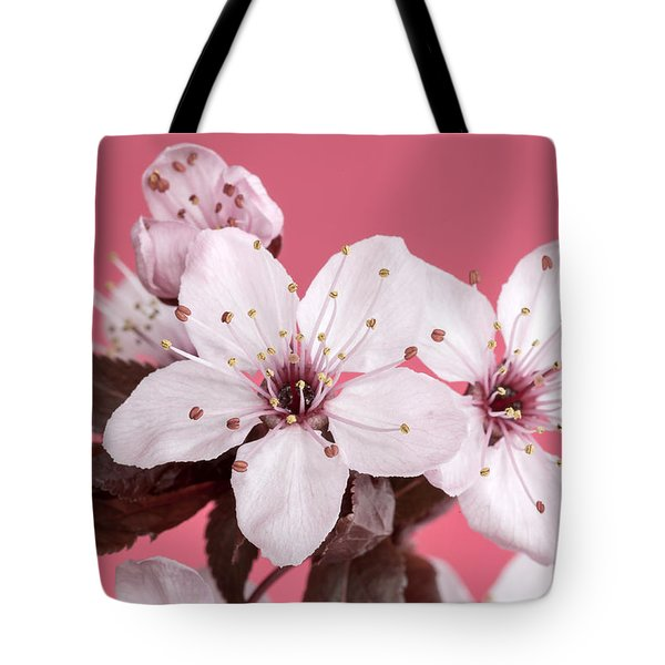 Pink Cherry Blossom Tote Bag