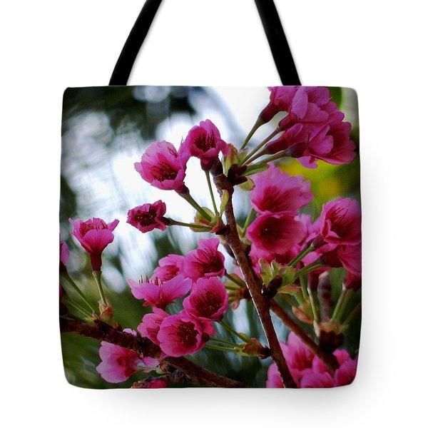 Pink Cherry Blossoms Tote Bag by Pamela Walton
