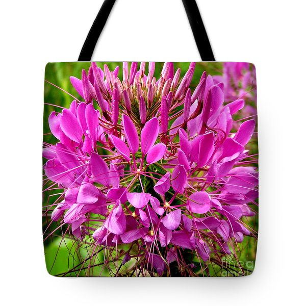 Pink Cleome Flower Tote Bag by Rose Santuci-Sofranko