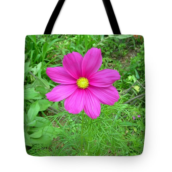 Pink Cosmos Tote Bag by Aimee L Maher Photography and Art Visit ALMGallerydotcom