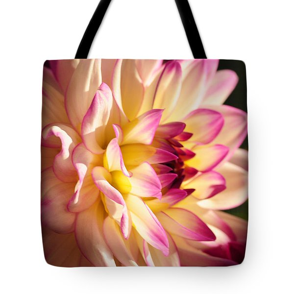 Pink Cream And Yellow Dahlia Tote Bag