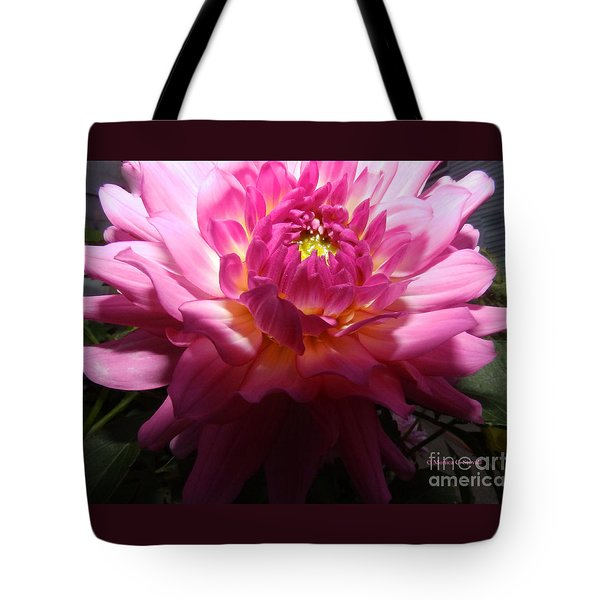 Pink Dahlia Opening Collection No. P49 Tote Bag