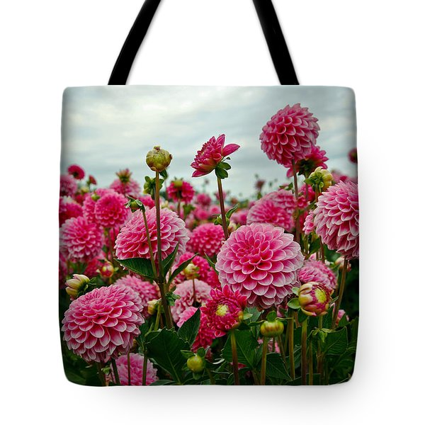 Pink Dahlia Field Tote Bag