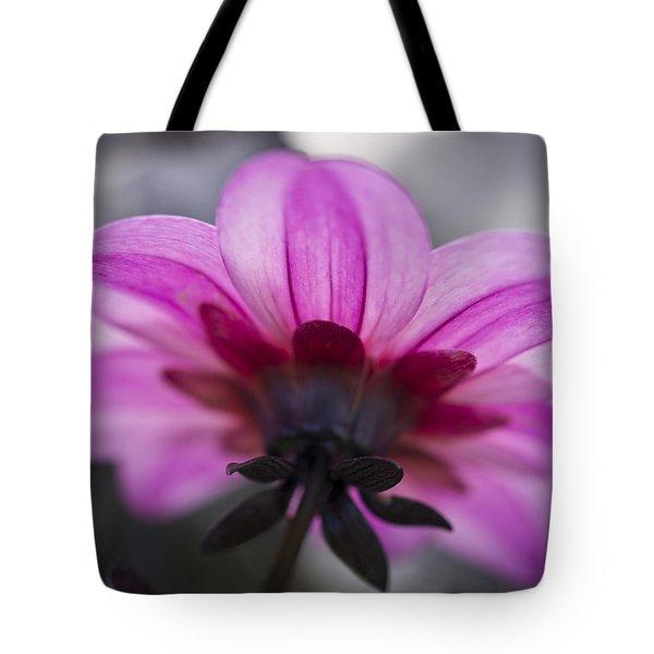 Pink Dahlia Tote Bag by Priya Ghose