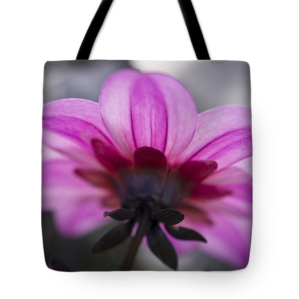 Tote Bag featuring the photograph Pink Dahlia by Priya Ghose