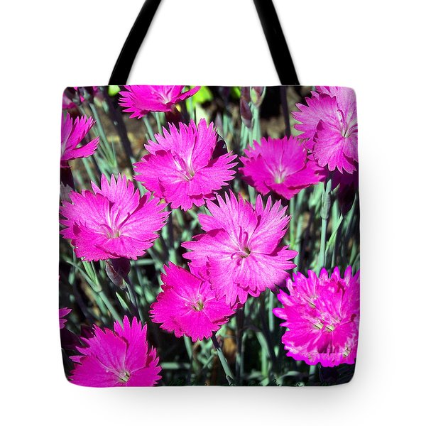 Tote Bag featuring the photograph Pink Daisies by Gena Weiser