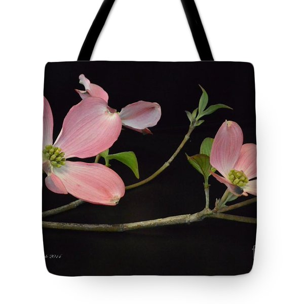 Tote Bag featuring the photograph Pink Dogwood Branch  by Jeannie Rhode