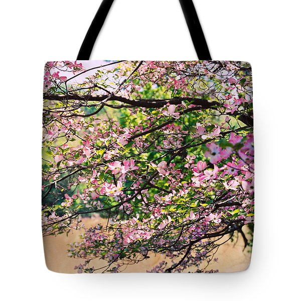 Pink Dogwood I Tote Bag