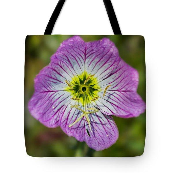 Pink Evening Primrose Tote Bag